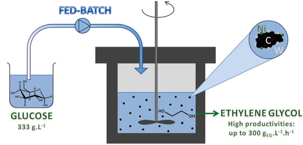 Conversion of Sugars to Ethylene Glycol with Nickel Tungsten Carbide in a Fed-Batch Reactor: High Productivity and Reaction Network Elucidation