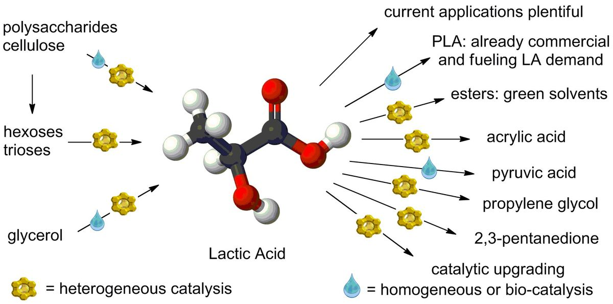 Lactic acid as a platform chemical in the biobased economy: the role of chemocatalysis.